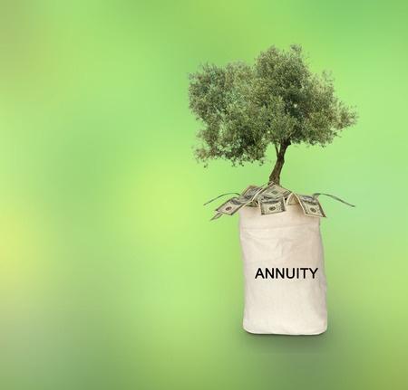 Understanding Annuity Plans